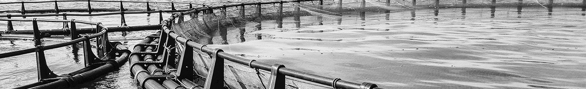 Aquaculture Net Cleaning Systems – Fish Farm Pumps | NLB